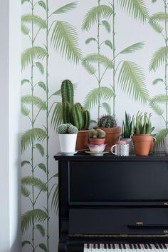 Love this wallpaper - Femkeido