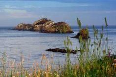Chalets Restigouche / Camping | Destination Restigouche