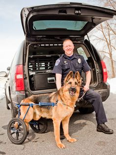 Check out the inspiring story of how this officer fought for his police dog and partner. #pets