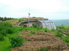 Lammas Eco Village in Wales - greenhouse and a view!