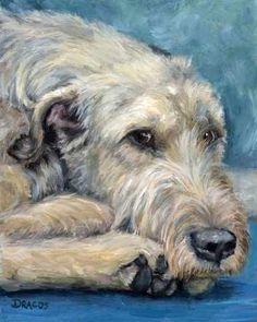 Irish Wolfhound Lying 8x10 Print of Original Painting by Dottie Dracos. $12.00, via Etsy.