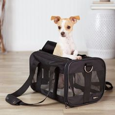 Pet Carrier Soft Sided Small Dog Cat Airlines Approved Travel Backpack w/ Zipper #Amazonbasic