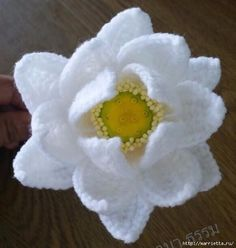 Water Lily Crochet Pattern. More Patterns Like This!