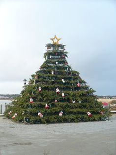 Festival of Lights - Barrington  December 5-8, 2013    Come see our Lobster Pot Christmas Tree!