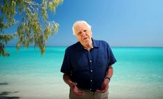 Attenborough interactive website highlights UQ reef research