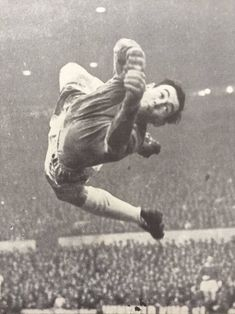 Stoke City goalkeeper Gordon Banks in action in 1969.