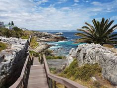 Hermanus, África do Sul South Africa, Countries, Travel Tips, Around The Worlds, Europe, Landscape, Architecture, Cape Town, Whales