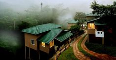 Wayanad District is a district in the north-east of Kerala state, India with headquarters at the town of Kalpetta.Know more about Wayanad here   #Wayanadtourpackage #Wayanadtours #WayanadTouristAttractions