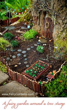 Delightful fairy garden around a tree stump on FairyGardens.com