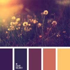 The color palette number 237  coral color palette for the designer selection of color, dark purple, warm shades of purple, violet and orange, the color of an eggplant color decor,