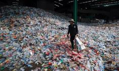 The end of plastic? New plant-based bottles will degrade in a year — The Guardian Beer Maker, Environmental News, Chemical Structure, Plastic Pollution, All Plants, Natural World, The Guardian, Climate Change, Plant Based