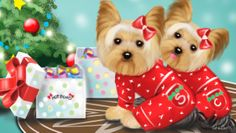 Art for HotBows.com Hot Bows for Christmas, Yorkies twin sisters. Art By CatiaCho - Art and design whimsy www.bycatiacho.com