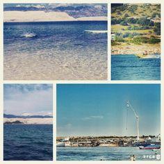 #zrce #novalja #pag #party #festival #event #beach #yolo #follow #sun #summer #music http://zrce.eu