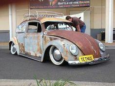 Rat bug