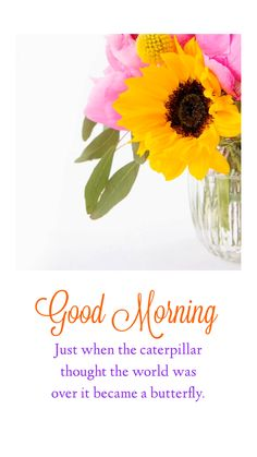 Good Morning Wishes Gif, Tuesday Quotes Good Morning, Good Morning Beautiful Pictures, Good Morning Beautiful Flowers, Morning Qoutes, Good Morning Friends Quotes, Good Morning Images Flowers, Morning Quotes Images, Good Morning Cards