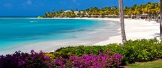 LUXURY HOLIDAY IN ANTIGUA from £5645 pp www.facebook.com/seasideandmoretravel  SAVE UP TO £1305 pp  - 7 nights at Jumby Bay A Rosewood Resort in a Beachside Suite on All Inclusive - Return flights on 21 June 2017* - Private transfers  Further info: info@seasideandmore.com  *Alternative dates, airports and upgrade options are also available  Holidays are provided by ARC Divers Ltd