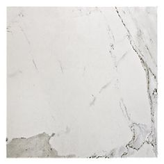 Carrara Estatuario Porcelain Tile 13 x 13 in. $4.69 a SF. This tile best represents a Natural stone like Marble.