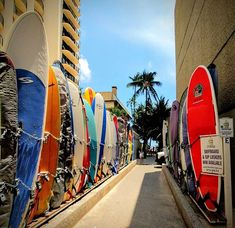 Ready to surf? Waikiki Beach, Surfboards, Surfs Up, Travel Bugs, Mobile Photography, Business Travel, Beach Day, Hawaii, Surfing