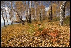 Фотографии доказывающие невероятную красоту Урала. Обсуждение на LiveInternet - Российский Сервис Онлайн-Дневников