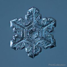 PrintCollection - Stellar Plate Snowflake 003.03.23.2014