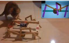 Como hacer un #Robot Araña - Hexápodo | #Robótica Educativa Make A Robot, Cool Crafts