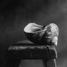 """All by myself"" - © Paola Marinangeli"