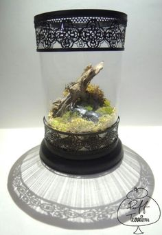 Beetle Attacks Terrarium in Vintage Jar Find us on Facebook :: puff terrariums #puff #terrarium #home #work #sky #decor #decoration #plant #cactus #garden #cat #puppy #wedding #centerpiece #green #moss #gift #DIY #crafts #art #cute  #jar #happy #bottle #yolo #lol #hkig