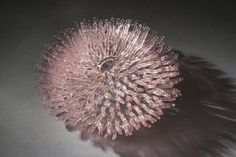 Colorful Glass Coral Sculpture EMILY WILLIAMS