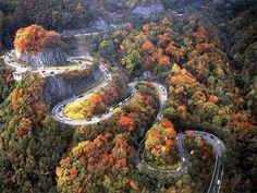 Tennessee, The Dragon ---- one of the highways in the Smokies