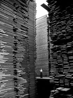 By Alfred Eisenstaedt    A man standing in the lumberyard of Seattle Cedar Lumber Manufacturing.