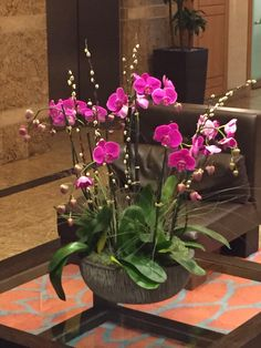 Arrival flowers to #MAWC2015 So happy to be here