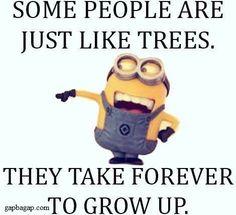 Funny Minion Jokes