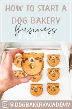 Puppy Treats, Diy Dog Treats, Gourmet Dog Treats, Puppy Food, Homemade Dog Treats, Healthy Dog Treats, Easy Dog Treat Recipes, Dog Food Recipes, Dog Cake Recipes