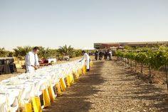 UNCE Orchard Project Dinner Table outdoor table setup in the desert