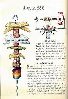 All sizes | 009-Codex Seraphinianus -1981- Luigi Serafini, via Flickr.