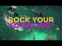 Rock My Adventure: Small Group Africa Tours