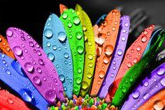 Ho bisogno di colori tenui, accarezzanti... Ho bisogno di piccole cose ... di Rita Biglia