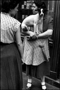 Elliott Erwitt Dogs | Elliott Erwitt, France, Paris, 1952. The French love their dogs.