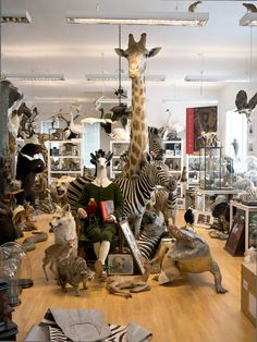 "My Trip to Alexis Turner's ""London Taxidermy"" Shop: Guest Post for new Walter Potter Blog"