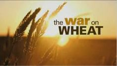 "War on Wheat, the CBS News Fifth Estate documentary explores the current consumer anti-gluten, anti-wheat movement.  In particular, the film profiles Dr. William Davis, the author of Wheat Belly, which is considered by some as the ""bible"" of individuals who are on a wheat-free diet."
