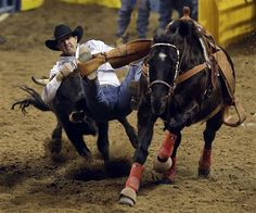 Our Purple Cowboy endorsee Trevor Knowles Trevor Knowles, of Mount Vernon, Ore., grabs the horns of a steer during the steer wrestling competition of the National Finals Rodeo, Wednesday, Dec. 12, 2012, in Las Vegas. (AP Photo/Julie Jacobson)