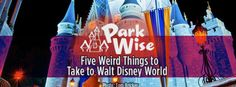 Five Weird Things one family takes to Walt Disney World OK - I have to agree that a couple of these are weird -- but the others do make great sense -- as do some of the suggestions made in the comments. Frontpagepic_parkwise