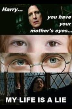 Another Harry Potter Moment...