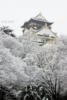 Snow in Osaka Castle, Japan I would love to go back in the winter.  it was just so beautiful without snow