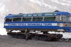 columbia ice field snow tours - Google Search