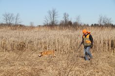 U.S. hunters, anglers reverse decline