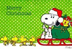 クリスマス | 完全無料画像検索のプリ画像!