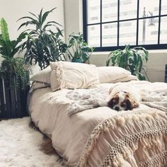 55+ Urban Outfitters Bedroom