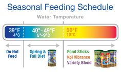 We recommend following a Seasonal Feeding Schedule when temperatures are between 39°F and 50°F.  Wheat-germ foods are ideal to transition fish out of winter because it is highly digestible at low temperatures. This is especially important because in the colder months, fishes' metabolism and the pond's ammonia-reducing biological activity are greatly diminished.  #tetrapondspringandfalldiet #springpondtips #tetrapond #pondfishfood