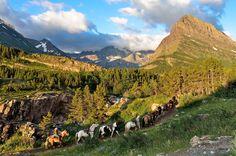 Picutre of horseback riding Glacier National Park, Montana Parc National, National Parks, Adventure Activities, Mountain Range, Go Camping, Wanderlust Travel, Horseback Riding, Outdoor Travel, Fly Fishing